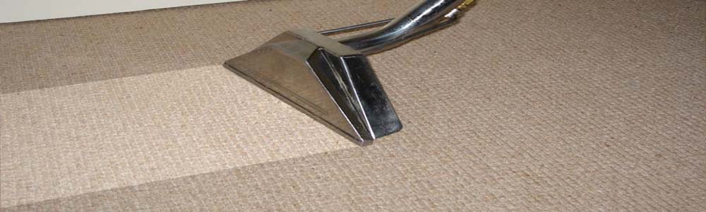 Professional Carpet Cleaners in Manchester