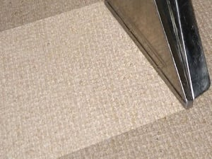 The Complete Carpet Stain Solution Guide